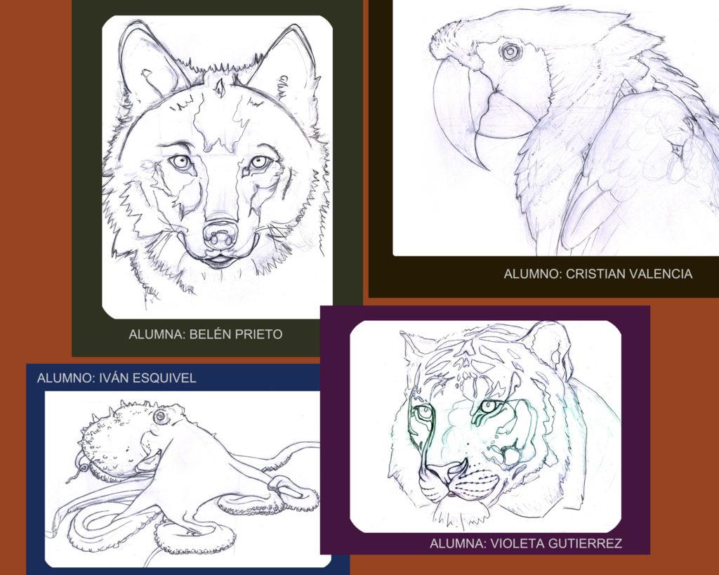 Bocetos animales para Ilustración