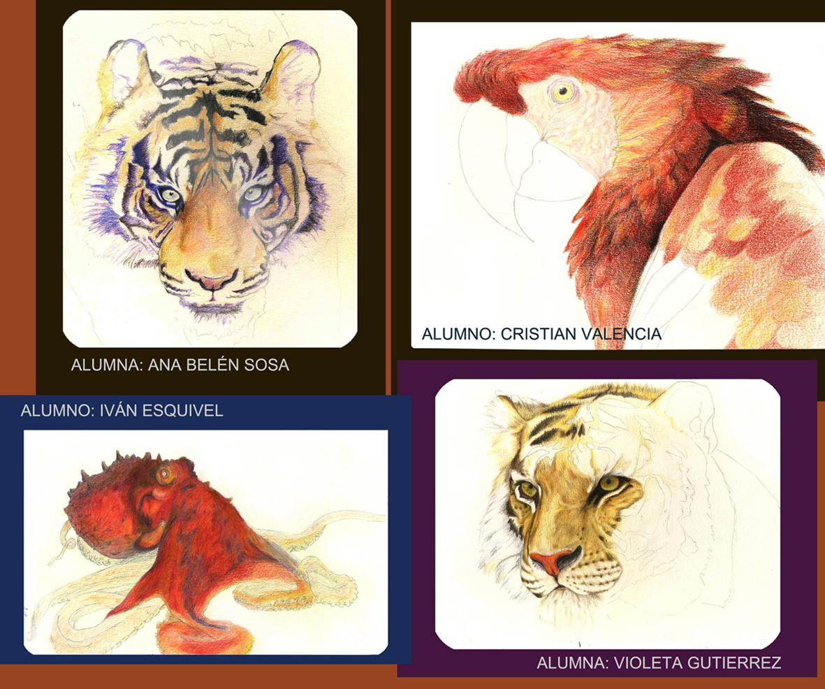 lápiz color animales curso Ilustración