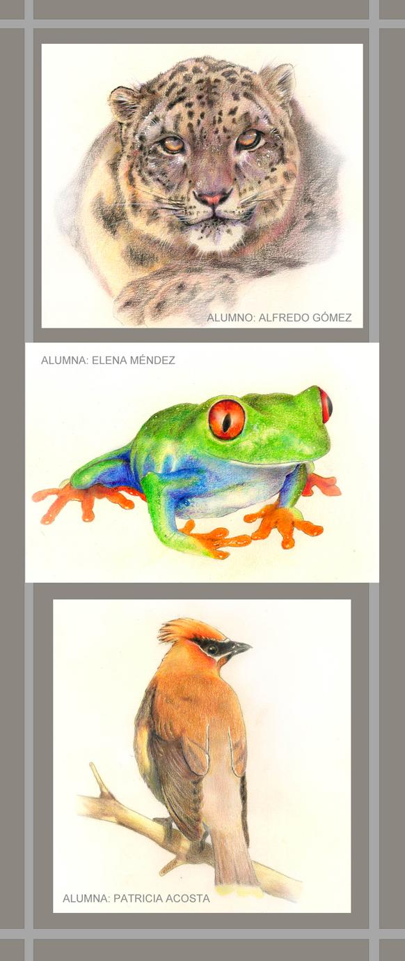 Lápiz color Patricia, Alfredo,Elena