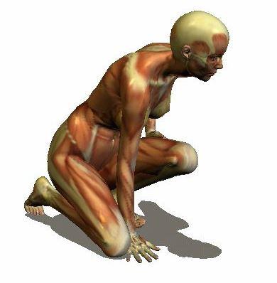 Por qué necesitamos dibujar anatomía? | Arteneo