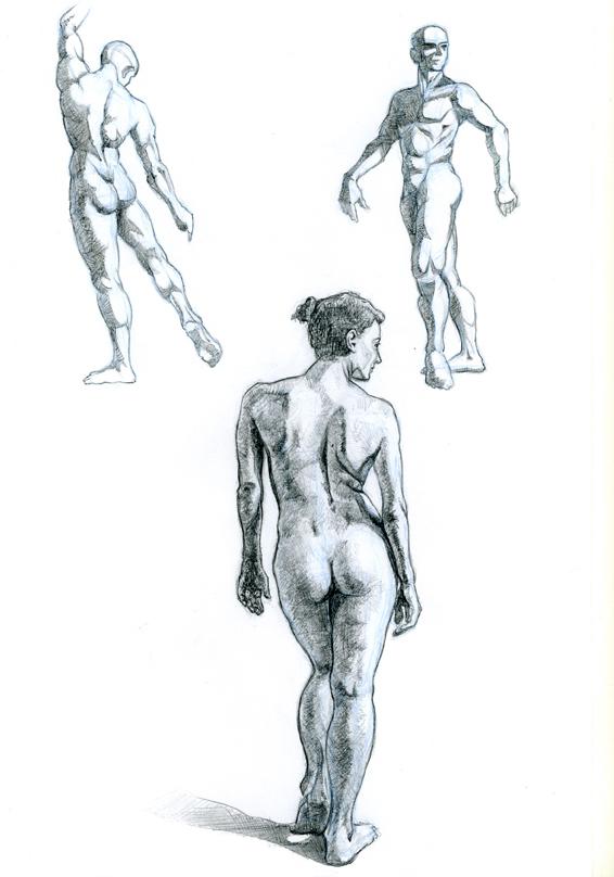 Dibujo del natural modelos